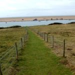 Footpath From The Farmhouse To The Fleet Estuary